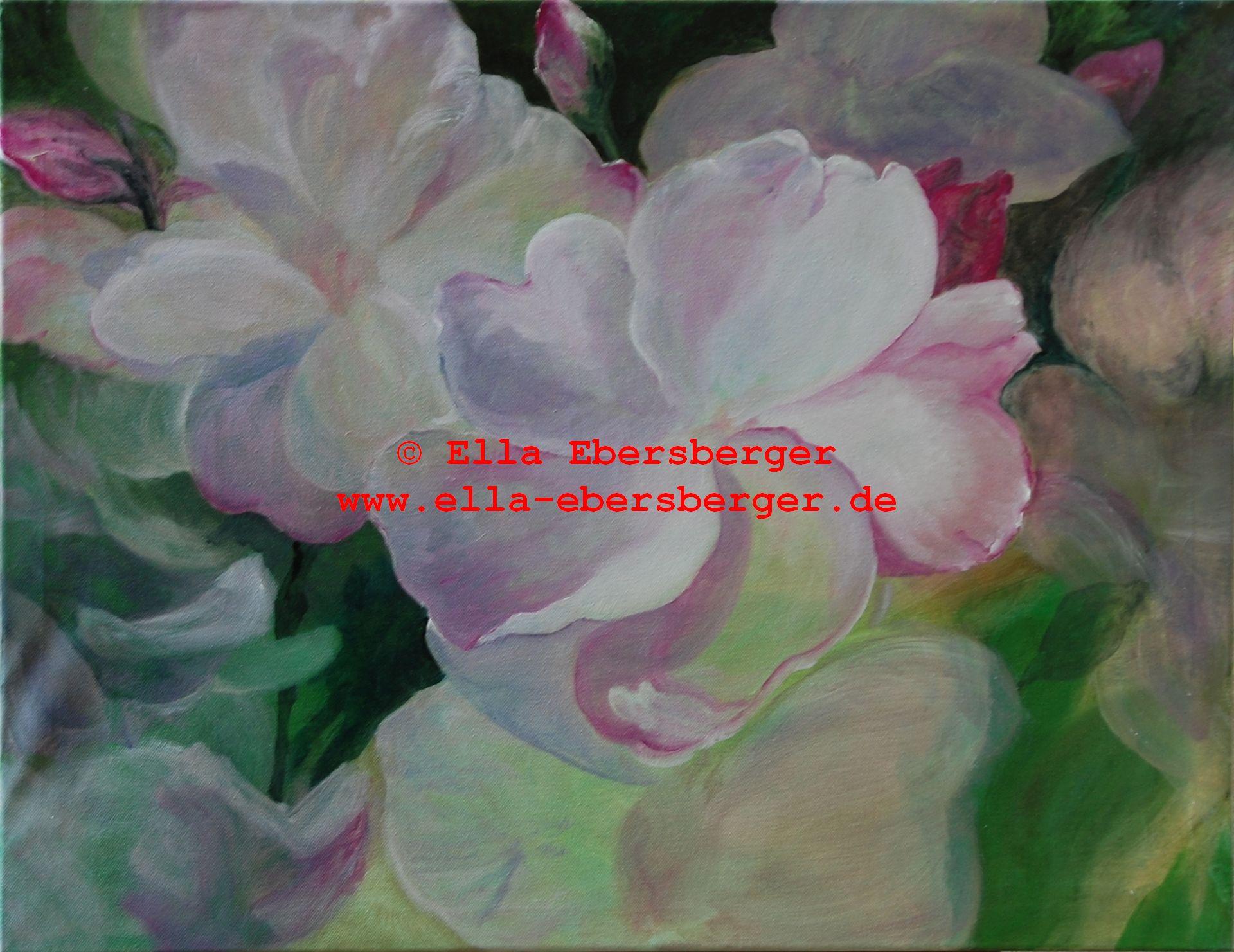 1. Der Rosenbusch