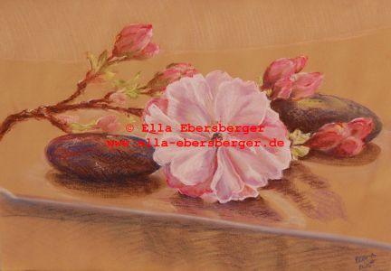 1. Kirschblüte